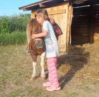Bild 20: Wellness-, Wander- und Familienurlaub im aufwendig renovierten Landhaus