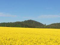 Bild 29: Willkommen zum Wohlfühlen in der Sächsischen Schweiz